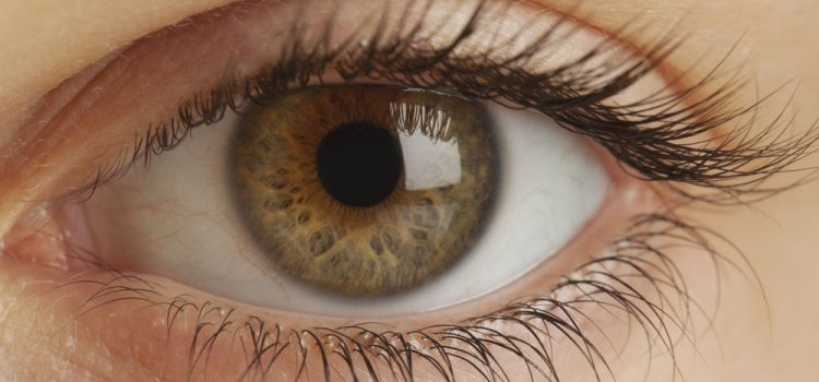 A helyes fénytörésű szem